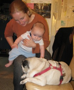 Cousin Jane (once removed) introduces Dylan to her pug.